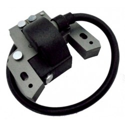 Coil Briggs and Stratton Horizontal and Vertical 5HP